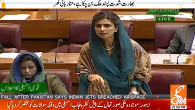 Photo of Hina Rabbani Khar Speech on India in Pakistan National Assembly
