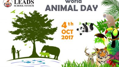 Photo of World Animal Day | 4  October | Leads School System