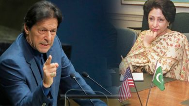 Photo of Milliha Lodhi Returns to Action After Imran Khan's Dismissal