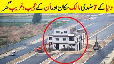 Photo of 7 Most Stubborn Homeowners | Strange Houses
