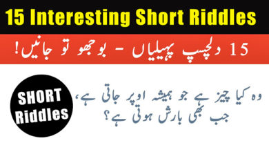 Photo of Interesting Short Riddles with Answers – Hindi | Urdu | English