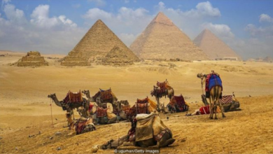 Photo of Egypt: Why should tourists visit Cairo in 2020?