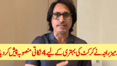 Photo of Rameez Raja Presented A Four-Point Plan For The Betterment Of Cricket