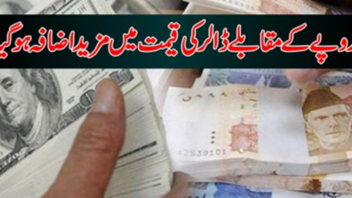 Photo of USA Dollar Increased in Local Open Currency Market | Report Live Updates