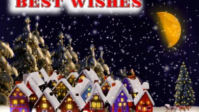 Photo of Merry Christmas Eve Wishes | Text | Status | Quotes for Friend and Family