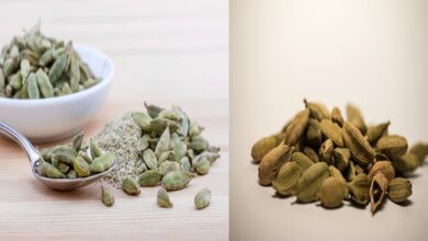Photo of Cardamom | 5 Benefits That Will Make Your 5 Big Difficult Easiest