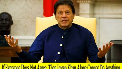 Photo of Imran Khan: If Everyone Does Not Agree, Then Alone Cannot Do Anything | Sayfjee